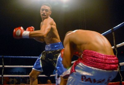 Maysonet Jr Remains Undefeated With First Round KO